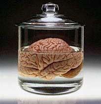 brain-in-a-jar