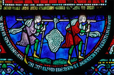 GrapesofEshcol-stained glass-CanterburyCathedral